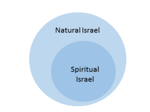 There is a true Israel within ethnic Israel.